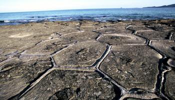 久米島町 畳石 奥武島 国指定天然記念物 観光案内