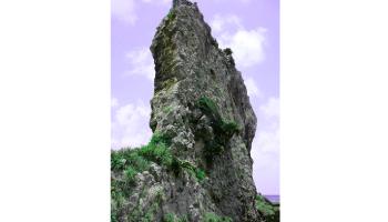 久米島町 タチジャミ 天然記念物 立神 観光案内